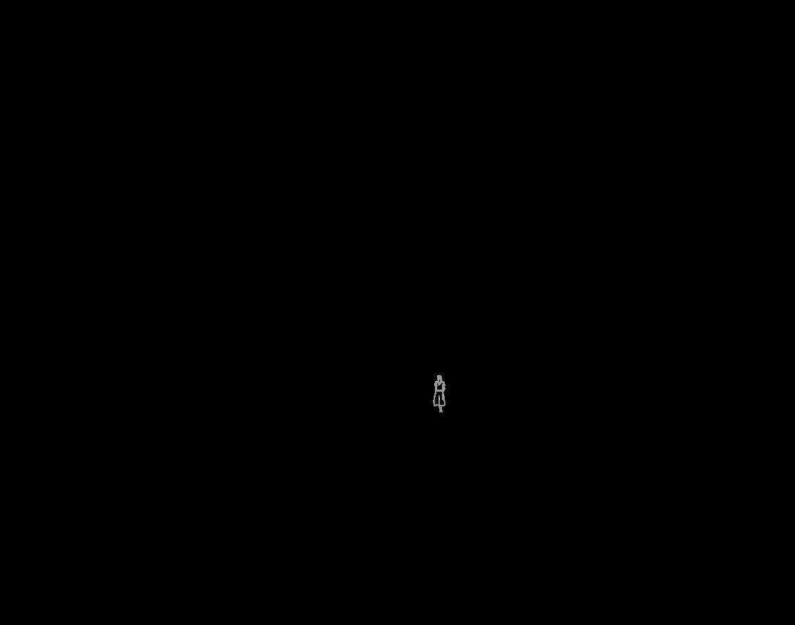 b1l (Custom)